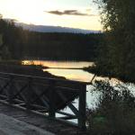 Vy över Dammsjön