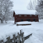 vinter_vedbodar