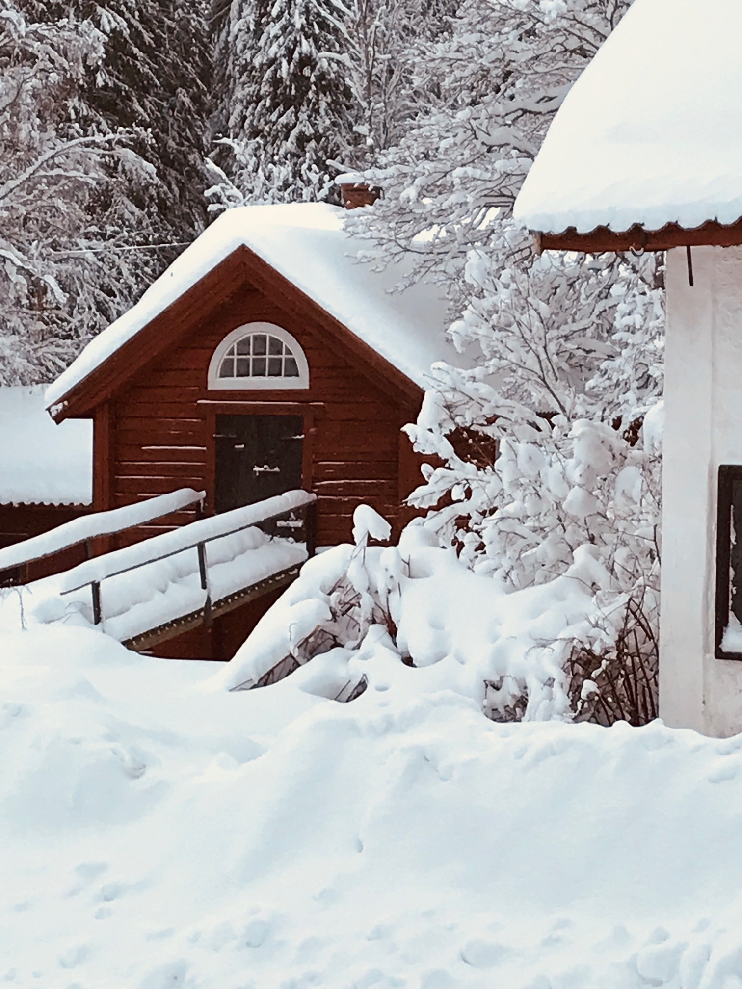vinter_kvarnen