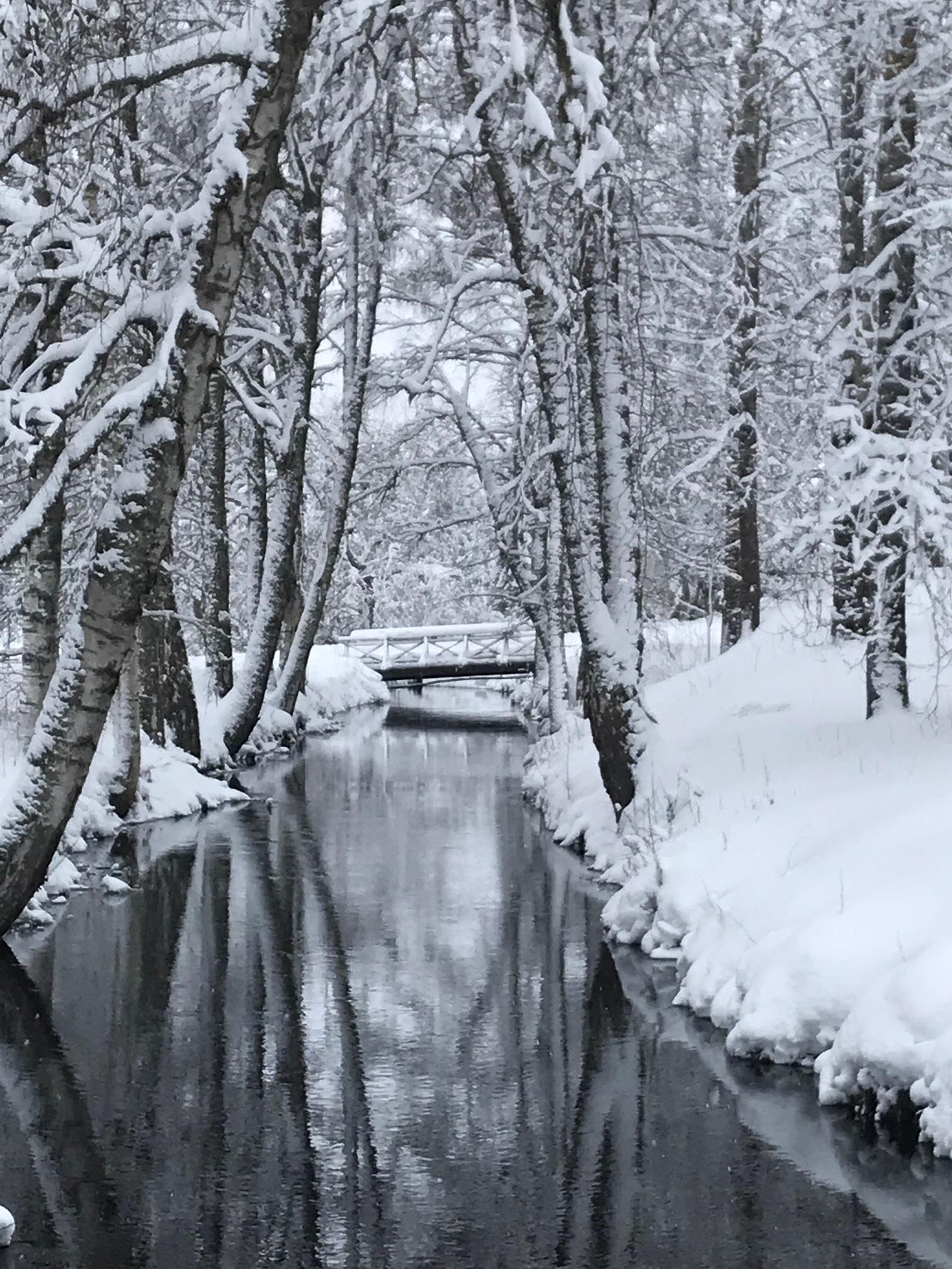 vinter_miljobild1