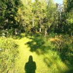 Miljö natur